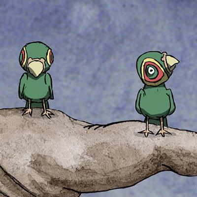 bird_festured